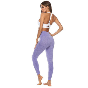 Seamless Series Curve Fit Workout Leggings
