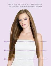 "#1 NATURAL BLACK - VOLUMIZER (24"") - Natural Curls"
