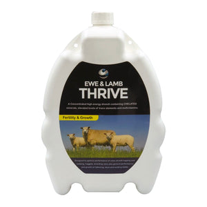 Ewe & Lamb Thrive - matrix-animal-health
