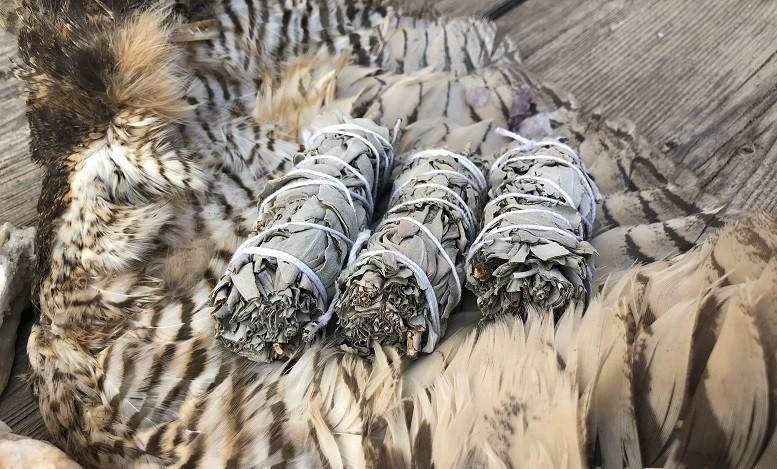 Gaia's White Sage (Domestic Shipping) - Gaia's Whole Healing Essentials