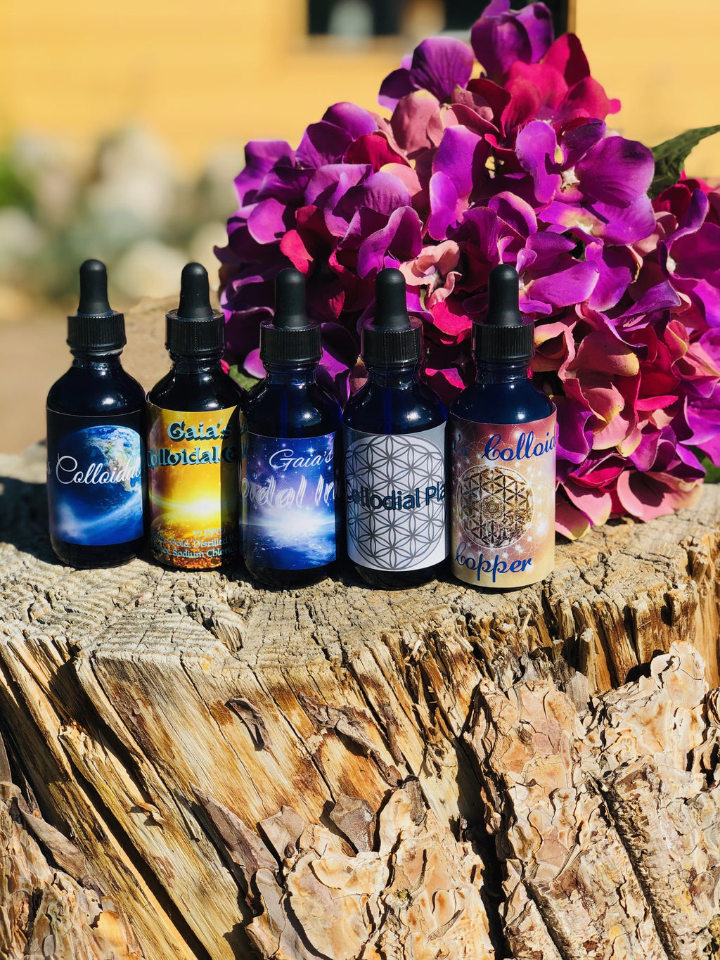 Gaia's Colloidal Sample Kit - Gaia's Whole Healing Essentials