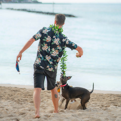 """<img src=""""Aloha-shirt-outside-with-dog-By-Daniel-Torobekov-from-Pexels.jpg"""" alt=""""A man with Aloha shirt is playing with his dog on the beach""""/>"""