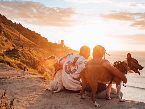 """<img src=""""marcos-paulo-prado-qoifwcnIpjM-unsplash.jpg"""" alt=""""Couple spending time on the cliff and watching the sunset with their dogs, Photo by Marcos Paulo Prado on Unsplash""""/>"""