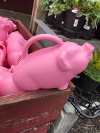 Watering Can- Babs the Pig