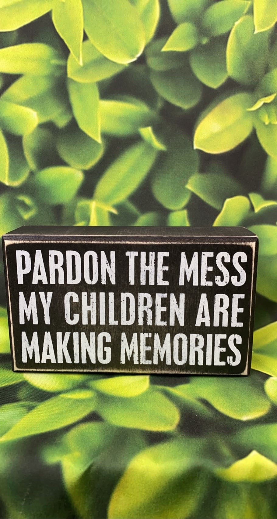 Pardon the Mess Wooden Sign