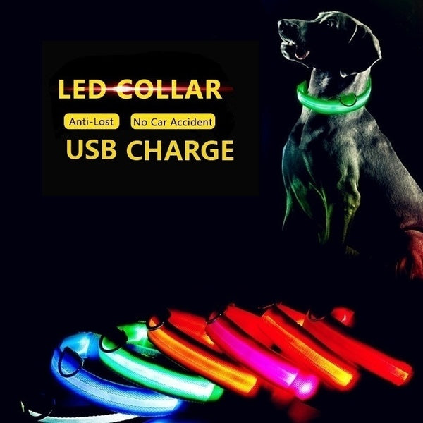 LED Dog Collar ✨ HOT SALE 50% OFF TODAY!