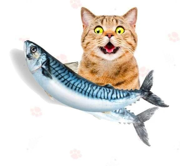 Dancing Fish Cat Toy - 50% OFF SALE TODAY ONLY