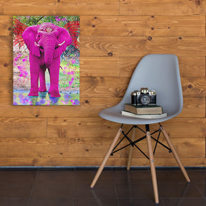 all seeing eye pink elephant art
