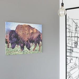 Buffalo Art - Impressionist Bison on the Range Canvas Print