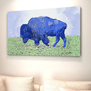 blue american bison
