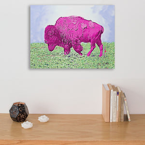 pink american bison art