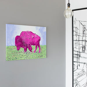 pink bison canvas