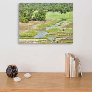 water and trees canvas art print