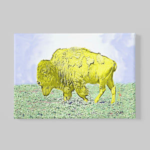 yellow bison canvas print