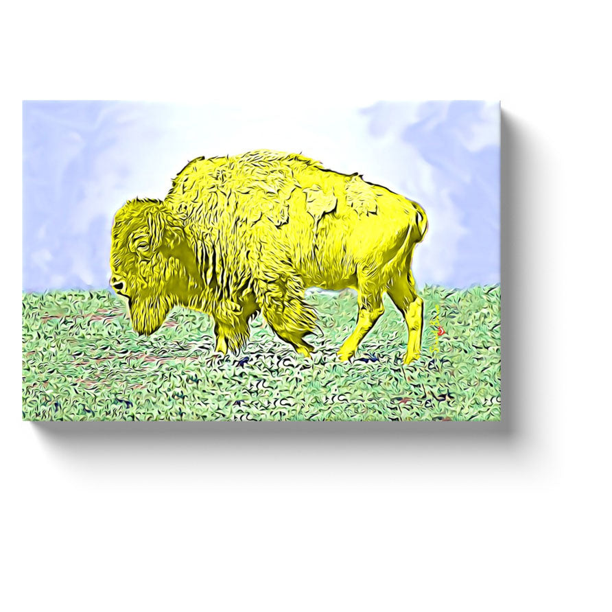 yellow buffalo home decor canvas prints