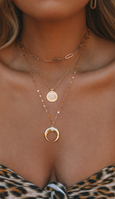 Load image into Gallery viewer, The Gold Horn Necklace