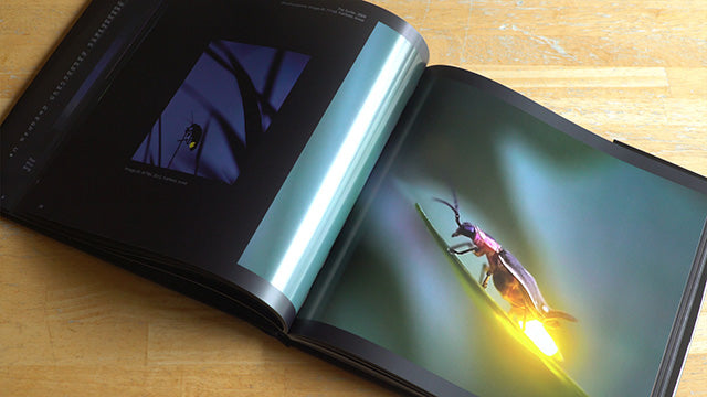 Firefly Experience Book Inside