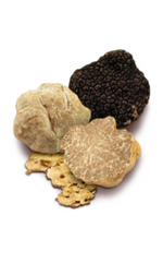 TRUFFLE ITEMS