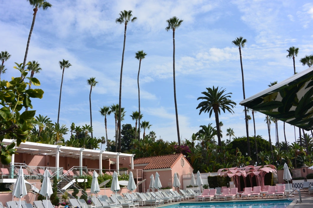 Beverly Hills Hotel, Poolside