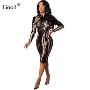 Black and Gold Sequin Dress Mesh Bodycon Midi Sexy Club Outfits 2020 Long Sleeve See Through Tight Dresses Woman Party Night - Y O L O Fashion Store