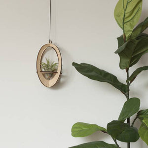 oval air plant hanger w/ airplant