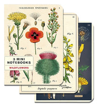 Load image into Gallery viewer, Mini Notebook Set - Wildflowers