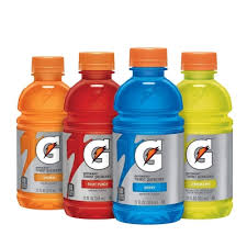 Gatorade 20oz Bottles   24ct
