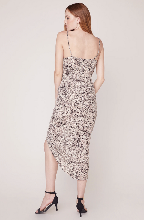 BB DAKOTA ON THE PROWL PRINTED DRESS BACK