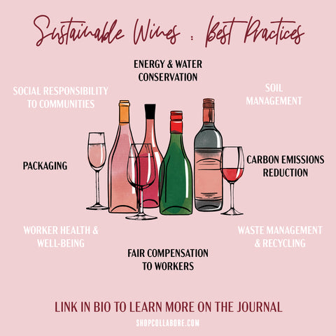 sustainable wine, sustainable fashion, women's apparel, fashion blogger