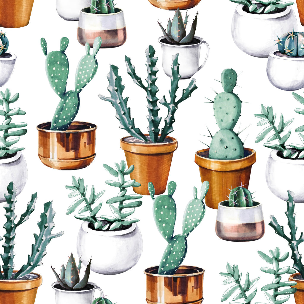 Eropt wallpaper mural consisting of various cactus | WallpaperMural.com