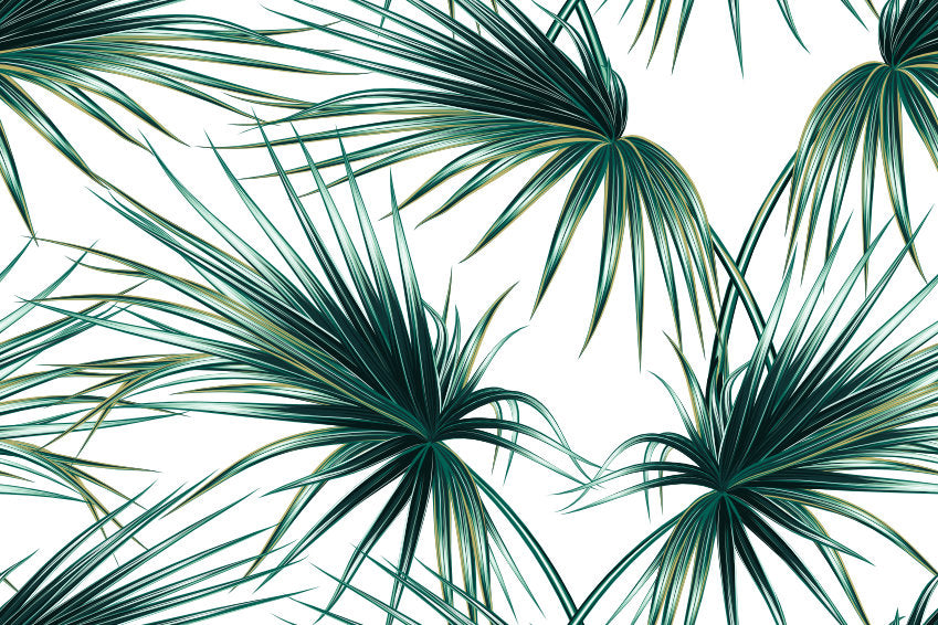 Palm Leaves wallpaper mural | WallpaperMural.com