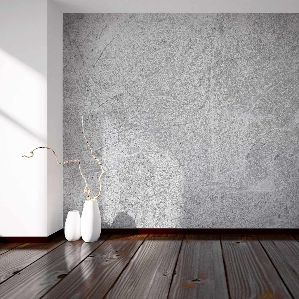 Exprecis wallpaper mural in a hallway | WallpaperMural.com