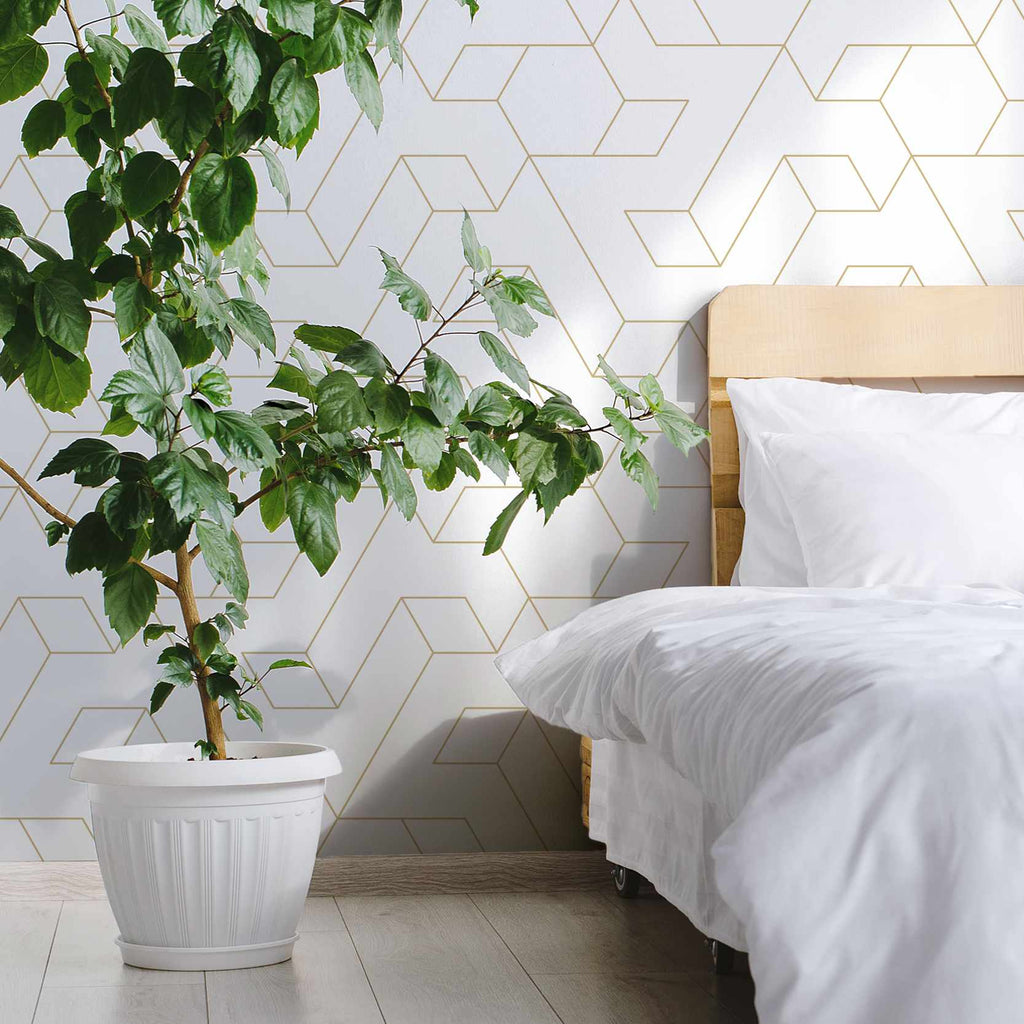 Froscles wallpaper mural with a Green plant | WallpaperMural.com