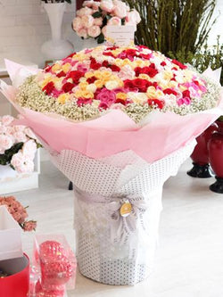 500 roses of Luxury Peach Creamy Sorbet