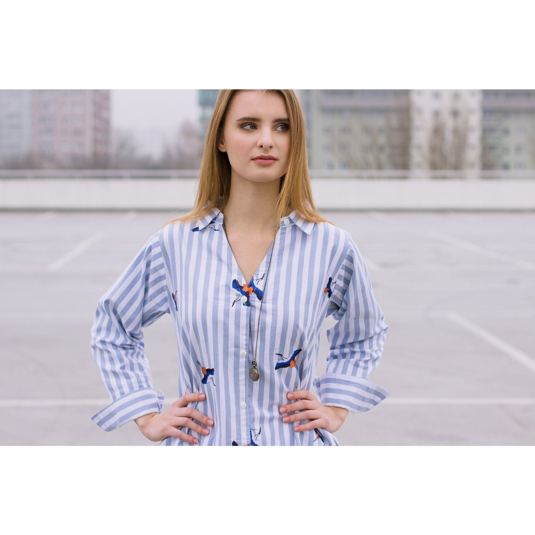 Blue n White Stripes With Swan Embroidery - Chilgozay Clothing