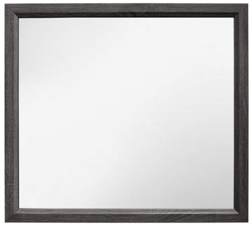 Homelegance Davi Mirror in Gray 1645-6 image