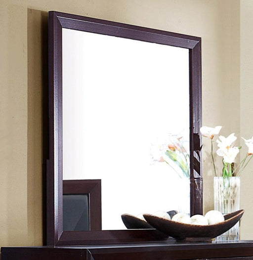 Homelegance Edina Mirror in Espresso-Hinted Cherry 2145-6 image