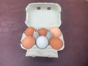 6 Hill Farm Eggs - local delivery or collection