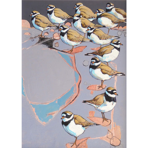 Painting of Ringed Plovers by artist Daniel Cole