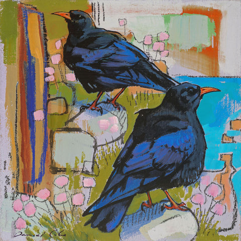Open edition print of Choughs by artist Daniel Cole