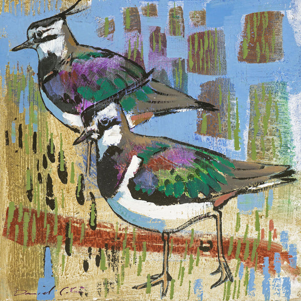 Open edition print of Lapwings by artist Daniel Cole