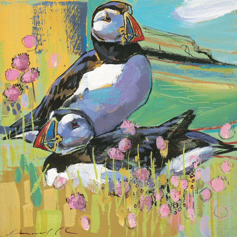Open edition print of Puffins by artist Daniel Cole