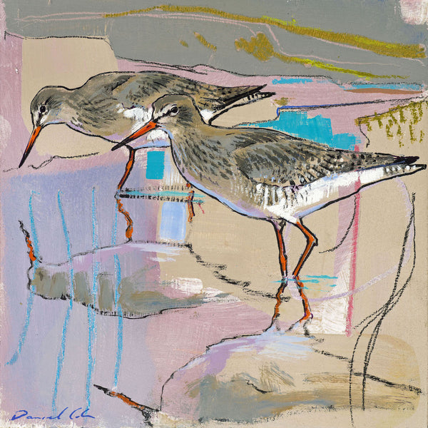 Open edition print of Redshanks by artist Daniel Cole