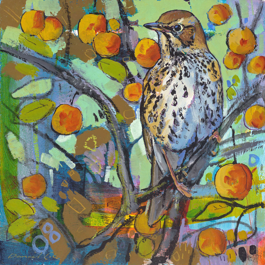 Open edition print of a Song Thrush by artist Daniel Cole