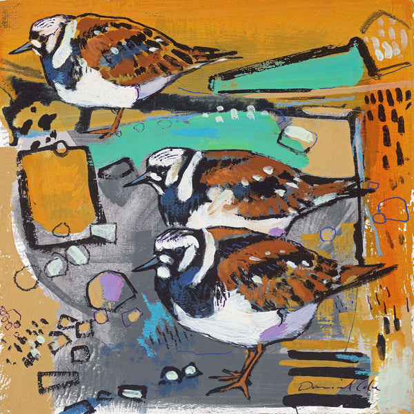 Open edition print of Turnstones by artist Daniel Cole