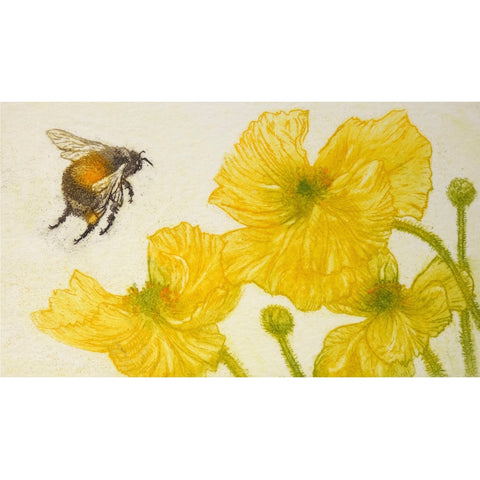 Limited edition etching of a bumblebee and flowers by artist Valerie Christmas