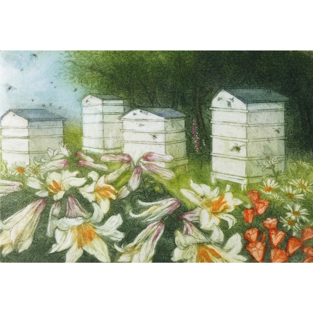 Limited edition etching of bee hives and flowers by artist Valerie Christmas