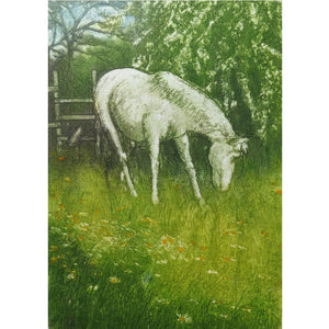 Limited edition etching of a horse grazing by artist Valerie Christmas