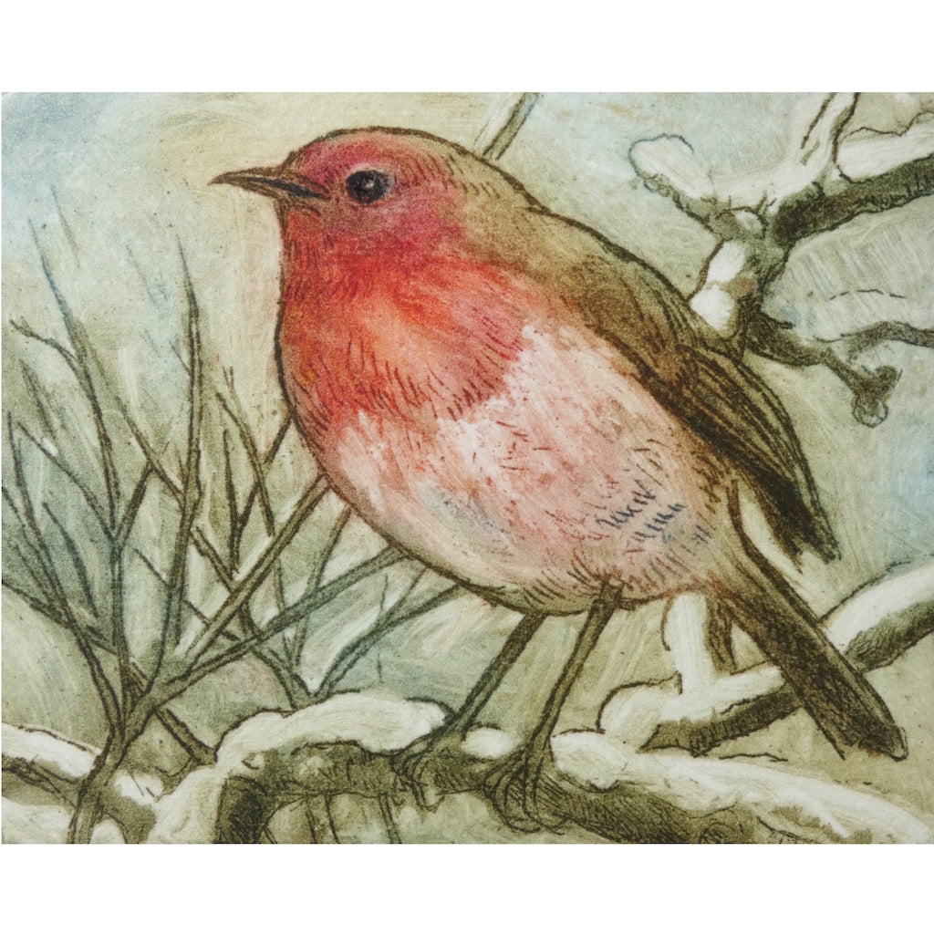 Limited edition etching of a robin by artist Valerie Christmas