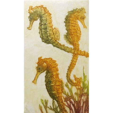 Limited edition etching of seahorses by artist Valerie Christmas